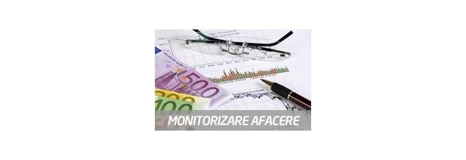 Monitorizare afacere